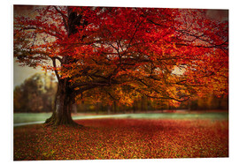Foam board print  Finest autumn - Hannes Cmarits