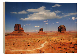 Wood  Monument Valley Navajo National Monument - Renate Knapp Waldundwiesenfee