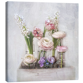 Canvas print  all about spring - Lizzy Pe
