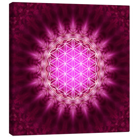 Canvas  Flower of life - Symbol harmony and balance - red - Lava Lova