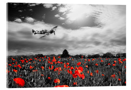 Acrylic glass  Spitfire Poppy Pass - airpowerart