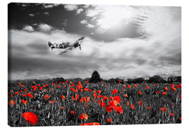 Canvas  Spitfire Poppy Pass - airpowerart