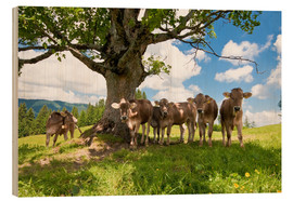 Wood  Young Cows - Jan Schuler