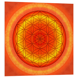 Foam board print  Flower of Life 2 - Christine Bässler