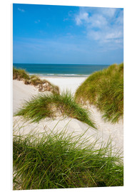 Forex  Seascape with dunes and beach grass - Reiner Würz RWFotoArt
