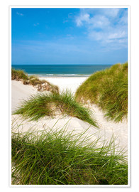 Premium poster Seascape with dunes and beach grass