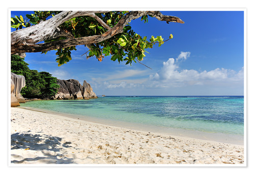 Premium poster Wonderful Beach of the Seychelles
