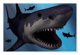 Premium poster A Megalodon shark from the Cenozoic Era