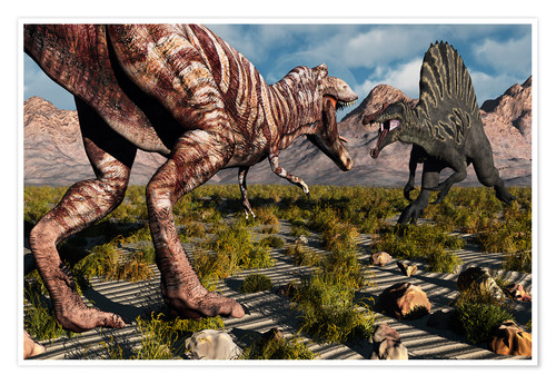 Premium poster A confrontation between a T. Rex and a Spinosaurus dinosaur