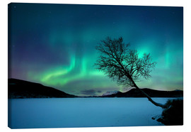 Canvas print  Aurora Borealis at Sandvannet Lake - Arild Heitmann