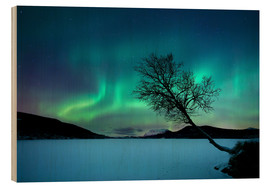 Wood print  Aurora Borealis at Sandvannet Lake - Arild Heitmann