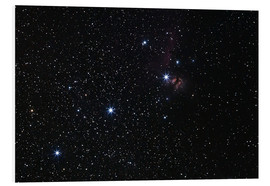 Foam board print  Nebula in Orion's belt - Luis Argerich