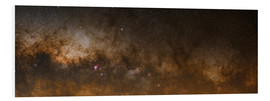 Foam board print  Milky Way - Luis Argerich