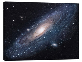 Canvas print  The andromeda galaxy - Robert Gendler