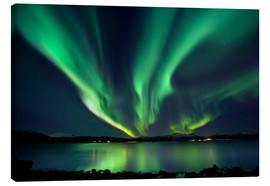 Canvas print  Northern lights over Tjeldsundet in Troms - Arild Heitmann