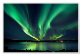 Premium poster Northern lights over Tjeldsundet in Troms