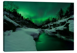 Canvas print  Aurora Borealis over Tennevik River - Arild Heitmann