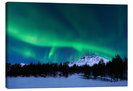 Canvas print  Aurora Borealis over Nova Mountain Wilderness, Norway. - Arild Heitmann