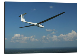 Alu-Dibond  Glider over the sea - Daniel Karlsson