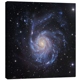 Canvas print  M101, The Pinwheel Galaxy in Ursa Major - Robert Gendler