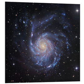 Foam board print  M101, The Pinwheel Galaxy in Ursa Major - Robert Gendler