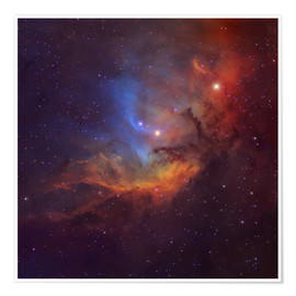 Premium poster The Tulip Nebula in Cygnus
