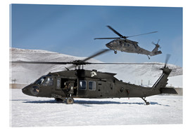 Acrylic print  Two US Army UH-60 Black Hawk helicopter - Stocktrek Images