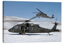 Canvas print  Two US Army UH-60 Black Hawk helicopter - Stocktrek Images