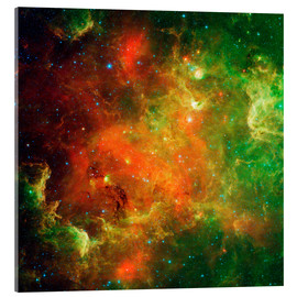 Acrylic print  Clusters of young stars - Stocktrek Images