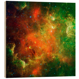 Wood print  Clusters of young stars - Stocktrek Images