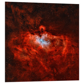 Foam board print  The Eagle Nebula in the constellation Serpens - Rolf Geissinger