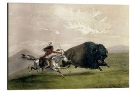 Aluminium print  The Buffalo Chase 'Singling Out' - George Catlin