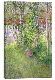 Canvas print  A Nap Outdoors - Carl Larsson