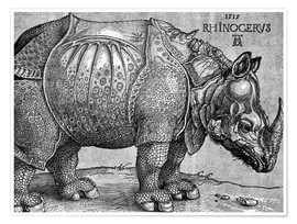 Premium poster The Rhinoceros