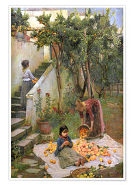 Premium poster  The Orange collectors - John William Waterhouse