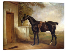 Canvas print  Buckle, Lord Chesham's hunting horse, 1836 - John E. Ferneley