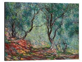 Aluminium print  Olive Trees in the Moreno Garden - Claude Monet