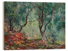 Wood  Olive Trees in the Moreno Garden - Claude Monet