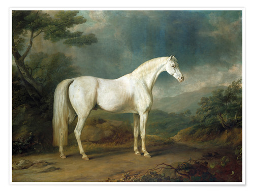 White Horse In A Forest Landscape 1791 Posters And Prints