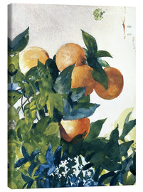 Canvas print  Oranges on a Branch - Winslow Homer