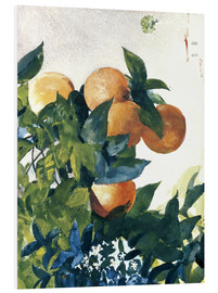 Forex  Oranges on a Branch - Winslow Homer
