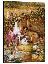 Aluminium print  The injured squirrel - John Anster Fitzgerald