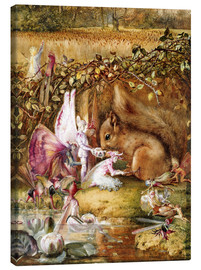 Canvas print  The injured squirrel - John Anster Fitzgerald