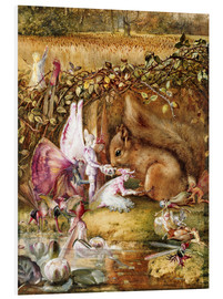 Forex  The injured squirrel - John Anster Fitzgerald