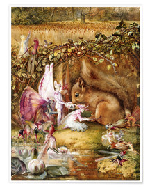Premium poster  The injured squirrel - John Anster Fitzgerald