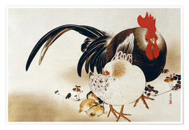 Premium poster Cockerel, hen and chicks