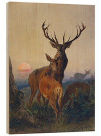 Wood print  A Stag with Deer at Sunset - Charles Jones