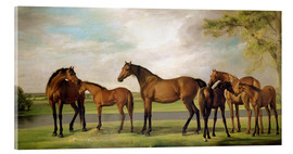 Acrylic print  Mares, foals and an approaching storm - George Stubbs