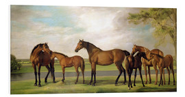 Foam board print  Mares, foals and an approaching storm - George Stubbs