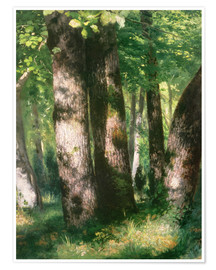 Premium poster In the Forest of Fontainebleau